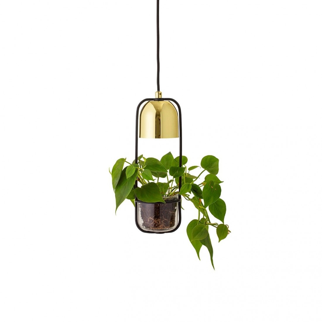 Suspension dorée avec plante Bloomingville