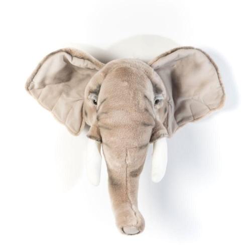 George l'éléphant - Wild & Soft